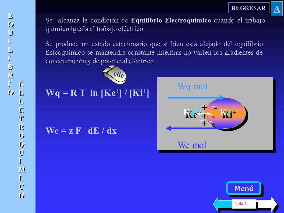 A Ke+ Ki+ + - + - Wq mol Wq = R T ln [Ke+] / [Ki+] We = z F dE / dx